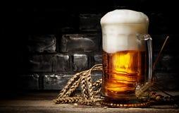 Cerveza y trigo imagen de archivo