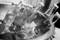 Cervezas Imágenes de archivo libres de regalías
