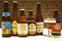 Cervezas belgas fotografía de archivo