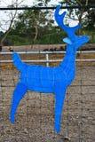 Cervi blu Immagine Stock