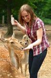 Cervi d'alimentazione della donna in un parco Immagini Stock Libere da Diritti