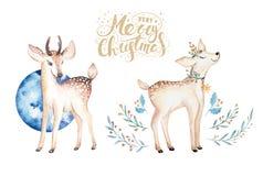 Cervi dell'acquerello di Natale Illustrazione dei bambini della foresta sveglia di natale, carta del nuovo anno o manifesto anima Fotografia Stock Libera da Diritti