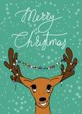 Cervi di Buon Natale Fotografie Stock Libere da Diritti