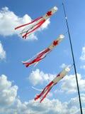 Cervi volanti con il reticolo canadese della bandierina Fotografie Stock