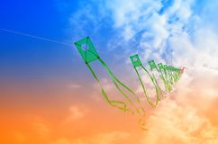 Cervi volanti nel cielo Fotografia Stock