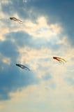Cervi volanti nel cielo Fotografia Stock Libera da Diritti