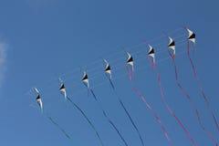 Cervi volanti nel cielo Fotografie Stock Libere da Diritti