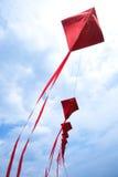 Cervi volanti rossi Immagine Stock