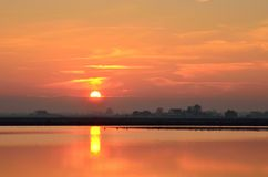 Cervia 's saline ,italy, in summer Stock Photo