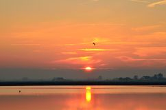Cervia 's saline ,italy, in summer Royalty Free Stock Photography