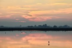Cervia 's saline ,italy, in summer Royalty Free Stock Photo