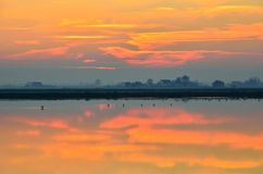 Cervia 's saline ,italy, in summer Stock Images