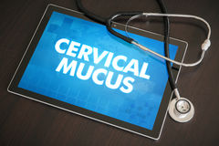 Cervical mucus (menstrual cycle related) diagnosis medical conce Stock Image
