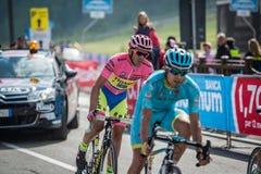 Cervinia, Italia 29 2015 Maj; Alberto Contador w Różowym bydle brać się do ostatnią wspinaczkę przedtem przed przyjazdem Zdjęcie Stock