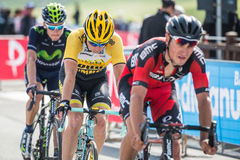 Cervinia, Italia 29 May  2015; Group of Professional Cyclists tackles the last climb Royalty Free Stock Photos