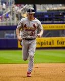 Cervo da BO, St Louis Cardinals Imagem de Stock