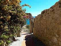 Cervo. The quiet of a pathway that goes to the sea Royalty Free Stock Images