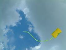 Cervo volante Immagini Stock Libere da Diritti