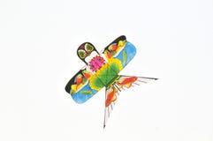 Cervo volante Fotografie Stock Libere da Diritti