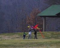 Cervo volante & famiglia Fotografie Stock Libere da Diritti