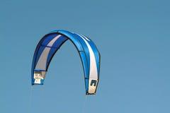 Cervo volante blu fotografia stock libera da diritti