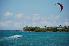 Cervo volante che pratica il surfing grande isola Fotografia Stock