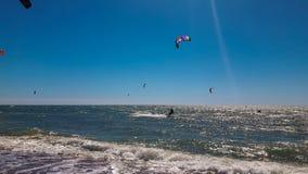 Cervo volante che pratica il surfing sul mare immagini stock libere da diritti
