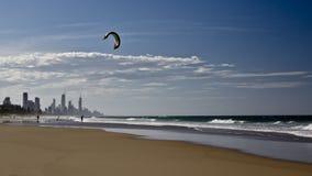 Cervo volante che pratica il surfing sul paradiso del surfista Immagine Stock Libera da Diritti