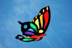 Cervo volante di volo fotografia stock libera da diritti