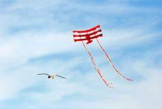 Cervo volante di volo e del gabbiano Immagini Stock Libere da Diritti