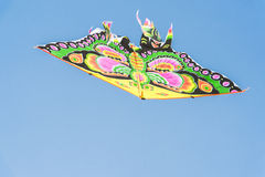 Cervo volante nella figura di una farfalla Fotografie Stock Libere da Diritti