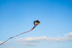 Cervo volante variopinto Immagini Stock Libere da Diritti
