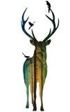 Cervos 2 ilustração do vetor