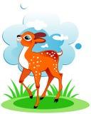 Cervos bonitos Foto de Stock Royalty Free