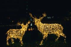 Cervos da rena das luzes de Natal imagens de stock royalty free