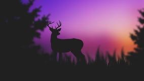 Cervos da silhueta Imagens de Stock Royalty Free