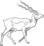 Cervos de passeio com curso tradicional da escova ilustração stock