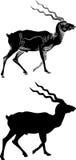 Cervos de passeio com silhueta ilustração stock