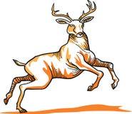 Cervos de Poland ilustração royalty free