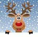 Cervos de Rudolph que prendem o papel em branco Fotos de Stock
