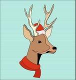 Cervos do Natal Fotografia de Stock