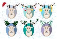 Cervos do Natal Um grupo de cervos no quadro Fotos de Stock Royalty Free