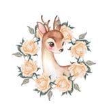 Cervos e flores do bebê watercolor ilustração royalty free