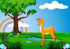Cervos na floresta ilustração royalty free