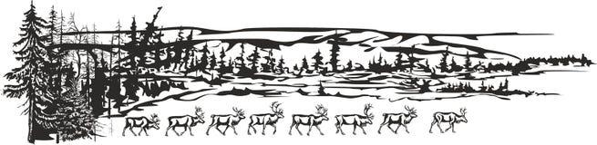 Cervos no lago ilustração do vetor