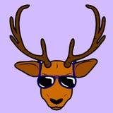 Cervos nos vidros ilustração do vetor