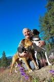 Cães de passeio Fotografia de Stock Royalty Free