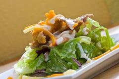 Cesar salad Stock Images
