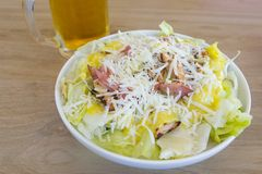 Cesar salad and a bear Stock Images
