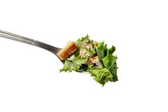 Cesar salad in a fork. Rich creamy cesar or caesar salad in a fork ready to eat Royalty Free Stock Images